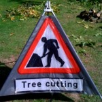 which tree surgeon shropshire